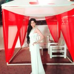 Bhumicka Singh 14